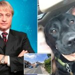 Russian billionaire Dmitry Obretetsky mysteriously killed while walking his dog in UK.